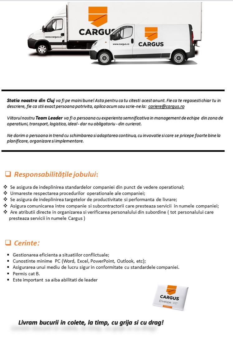 Anunt angajare extern TL PUD Cluj